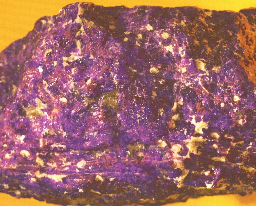 スギライト(Sugilite) 杉石・1977年に杉健一氏たちによって発見された石です。ぼくはこの石に今から1980年くらいに最初に出会い、むらさき色の顔料になるかもしれないと友人たちと試したことがありました。むらさき色の顔料は聞いたことがなかったのですが、杉石は明るいむらさき色の顔料になります。ぼくは 「スギムラサキ」と呼んでいました。標本産地:N7chwaning-mine,Hotazel,South Africa