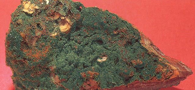 コニカルサイト(Conichalcite) コニカル石・主成分:含水砒酸塩銅鉱 表面にまるで薄く緑色の草原のように広がっている部分です。あまり一般的な鉱物ではありませんが、ナイフなどでその皮をそぐようにして削るとそのままで緑色の美しい粒々に成ります。僕はそこからヴィリディスエリス(Viridiseris 緑色の星座の意)と名付けています。標本産地:Ojvela-mine,Durango,Mexico