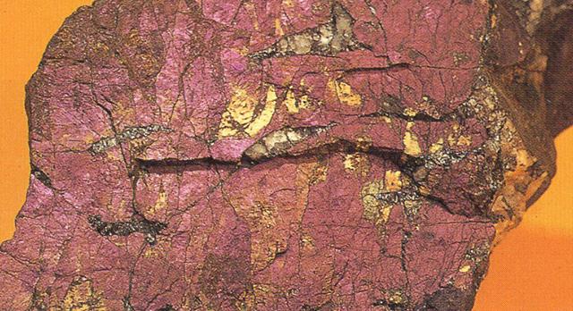 プルプライト(Purpurite) 紫石(むらさき石) 写真で見るとまさに名が示す通りのむらさき色ですが、粉体にすると、マルス・ヴィオレットのような色です。セラミックやダイヤモンド砥石で削ると顔料にすることができます。タマゴ・テンペラなどで使えるかもしれません。標本産地:Noumas pegmatite,nearcapeteun,Republic of South Africa