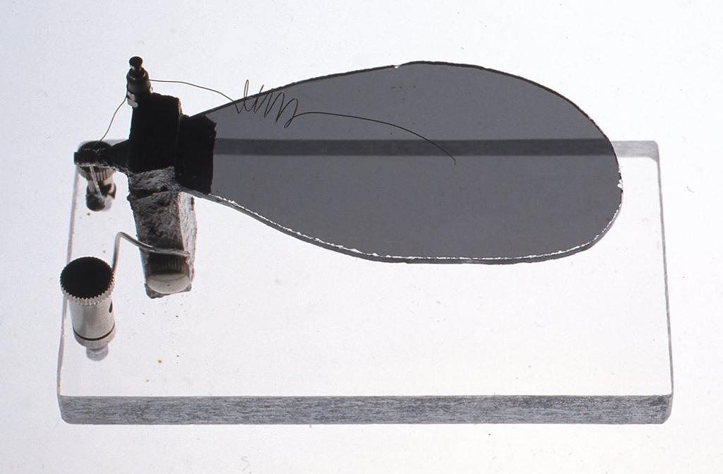 銀成硝子検波器 W11cm(台の長さ)