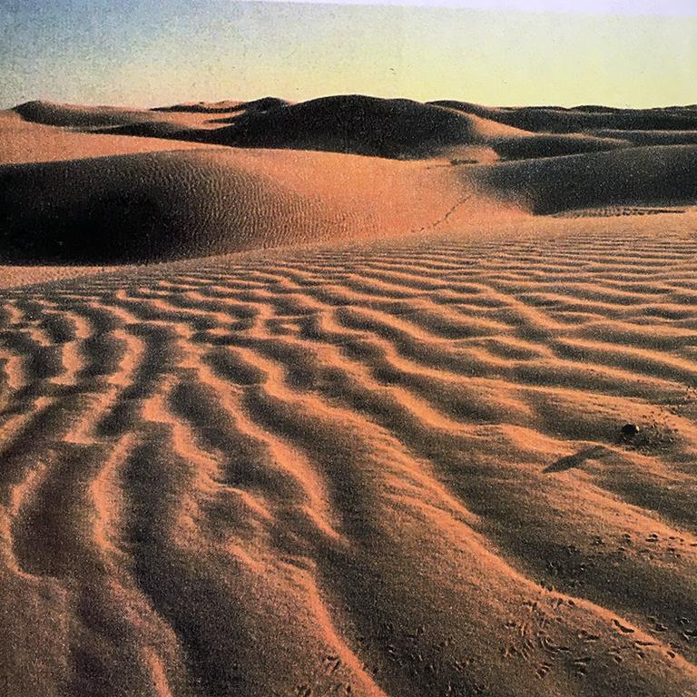砂漠 この風景の中では、取り残された者たちは即座に死を思い浮かべるだろう。昼の灼熱、夜の極寒、このゆさぶりに耐え切れず硬い岩さえ砂と化して行く。正に人間の力など遠く及ばない様に見える自然の一面だ。でもこれこそ今地球上に、人間が努力して作り続けている悲しい風景でもあるのだ。
