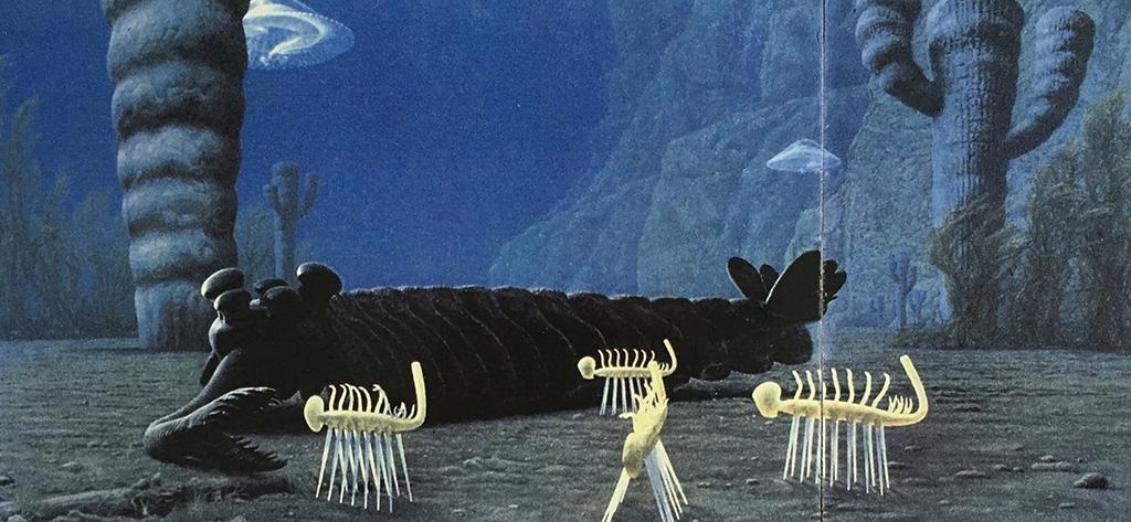 カンブリア紀の海の中 彼らはその時代の真只中にいた。おそらく宇宙を想像することも、愛によって育まれ、生きていくことへの疑問や希望も、僕らの方法とは少々違っていたかもしれない。7対の奇妙な脚(?)を持つハルキゲニア。象の鼻のように長い口(?)によって捕食しながら、五つの大きな複眼で僕らには感じられない構図の景色の中を生きたオパビニア。僕らのしていることは本当に少しだけ。彼らの言葉を知らなくてもカンブリア紀の穏やかな海の底で熱い想いを交感したい。