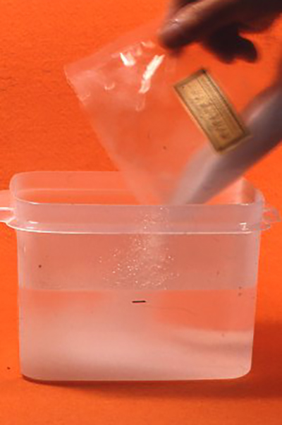 説明書にしたがって湯と白色の粉を容器で溶かす
