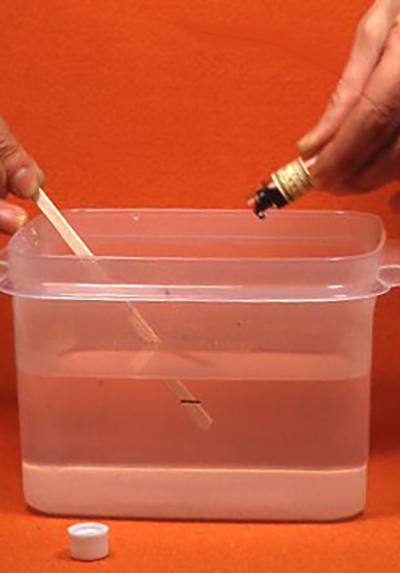 小瓶に入った「色の素」と呼ばれる薬品を入れる。多ければ針状に、少なければ塊状に結晶する。