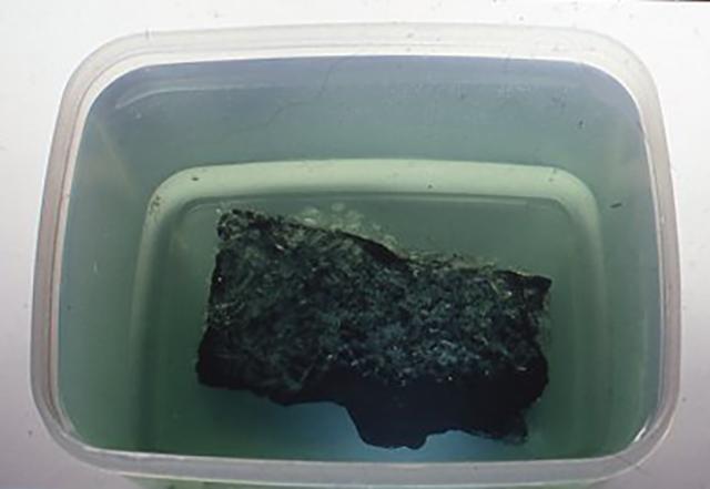 1日以上放置する途中で、あまり容器を動かしてはいけなが、母岩に結晶が出来始めたところを撮影してみた。