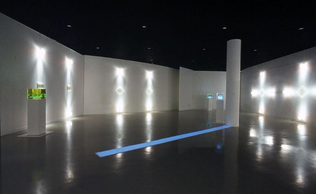 小林が十代でみた夢の記憶は、やがて2003年、福井市美術館での個展「ひかりさえ眠る夜に-ON A NIGHT WHEN EVEN LIGHT HERSELF SLEPT」開催へと繋がってゆく。