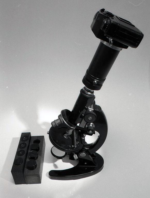 光学的単眼顕微鏡 この顕微鏡は長年使用しているものだ。少々ガタがきているので、時間のある時にゆっくり分解掃除をしてやりたいと思っている。これはまた、決して高価でも最新型でもないが、通常のプレパラートの観察では十分力を発揮してくれる。上の写真では、写真撮影用のカメラアダプターとカメラが取り付けてある。高倍率の実際の撮影には、あと外部にケーラー照明の光源が必要だろう。