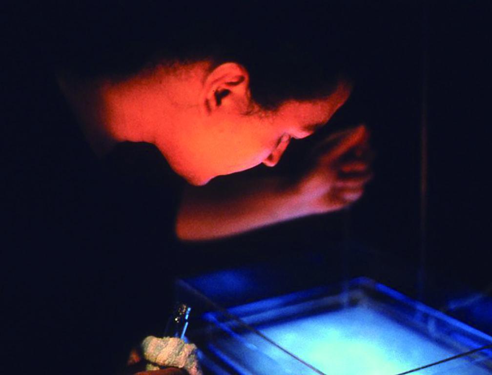 個展[CBALT CHRYSALIS] ARTIUM(福岡)で開催された展覧会は、培地を使用した実験的な内容。画像は作業中の小林健二